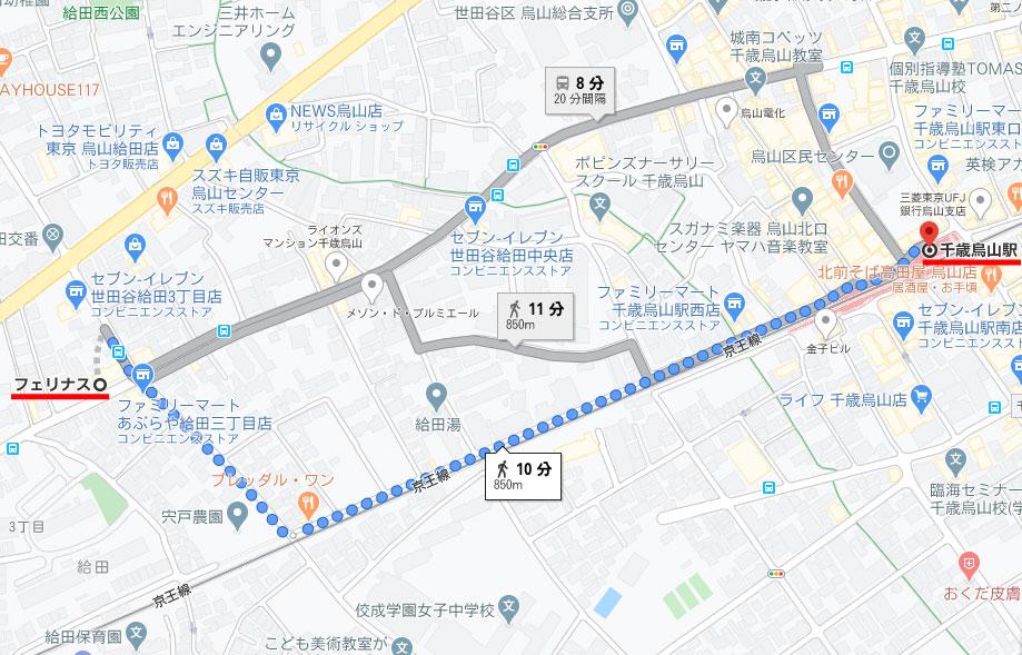 東京 フェリナス